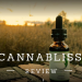 cannabliss cbd oil review